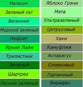 zelenye-oboi-v-interere_5980ded22e4cf.jpg
