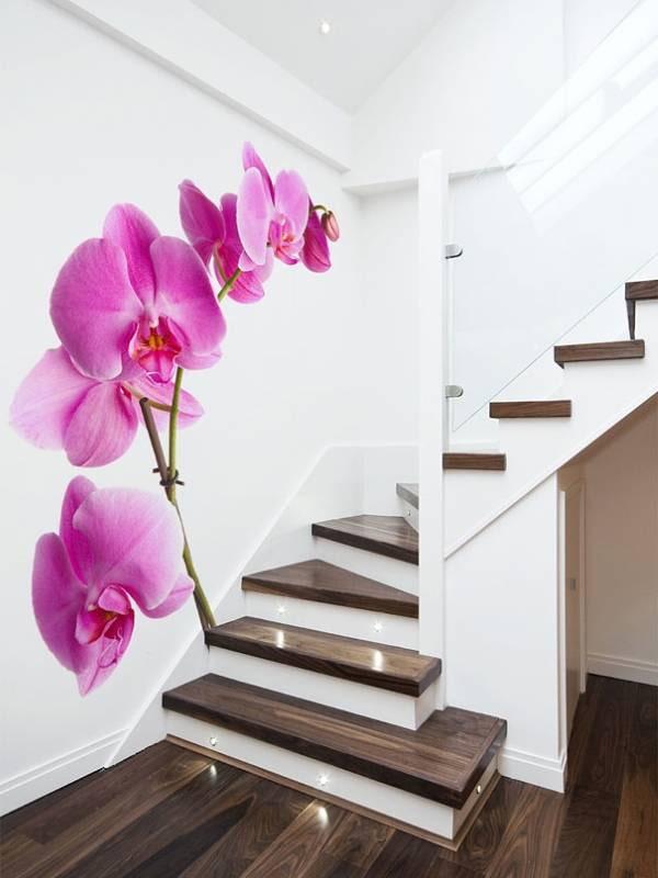 фотообои с орхидеей
