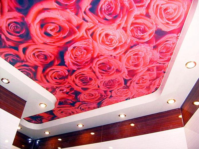 фотопечать красной розы на потолке