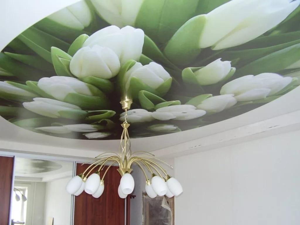 прокловой устанавливал натяжные потолки с фотопечатью белые розы почему сделать автомобиль