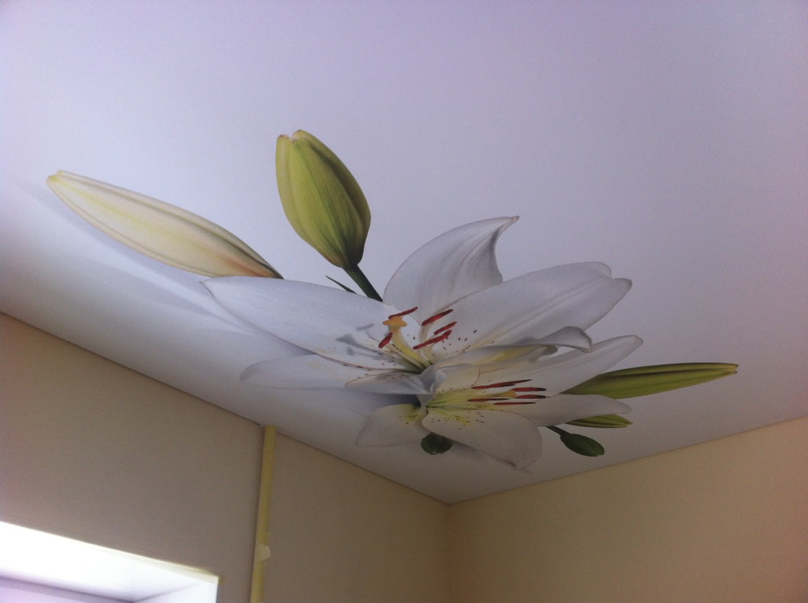 натяжные потолки с фотопечатью цветы нужно соблюдать