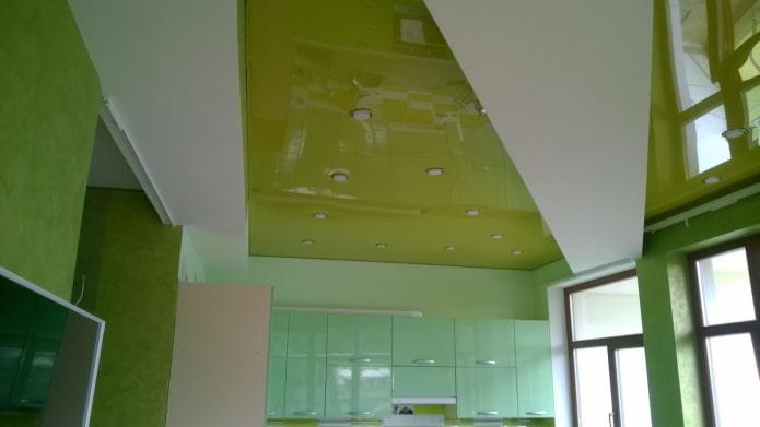 Потолок зеленого цвета: 60 фото, лучшие идеи в матовом или глянцевом оформлении