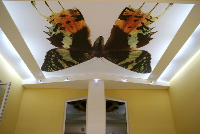 потолок с изображением бабочки