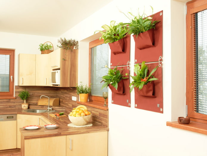 растения на стене в интерьере кухни