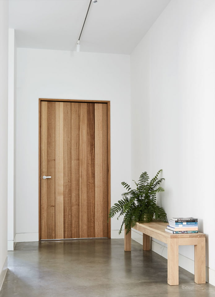 входная дверная модель в стиле минимализм