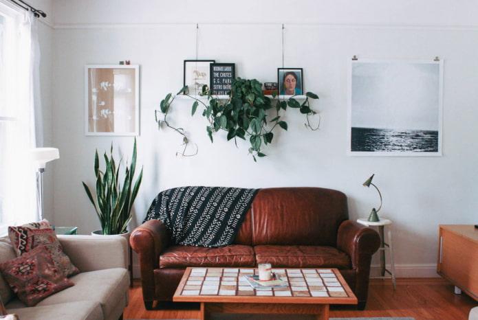 лиана над диваном
