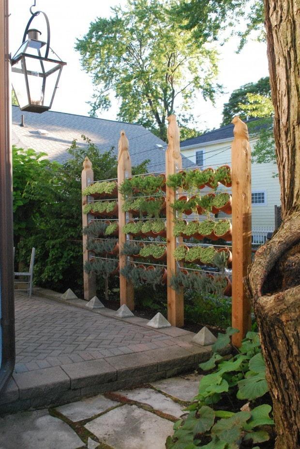 Ширма из растений в кашпо