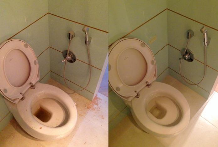 Унитаз до и после чистки порошком Sarma