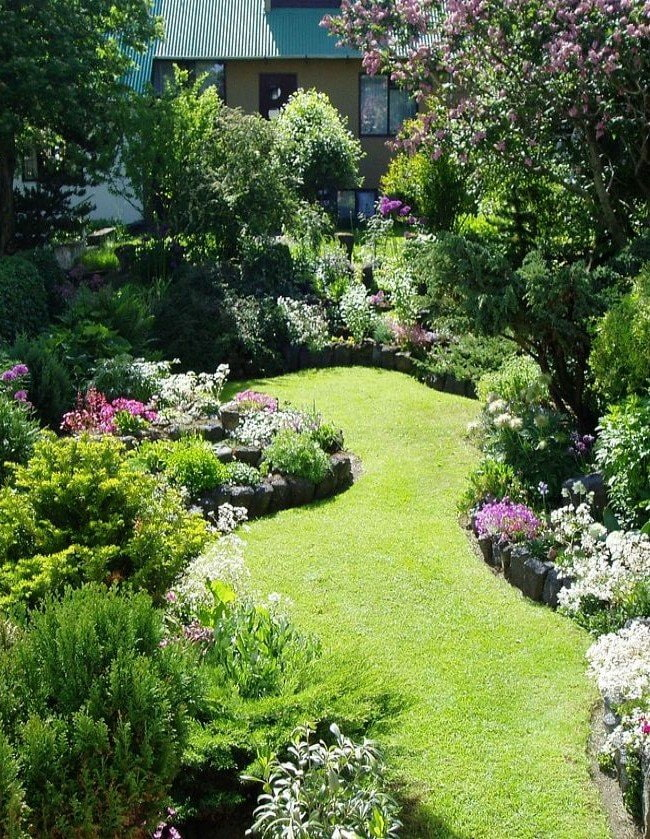 газон на поляне в саду