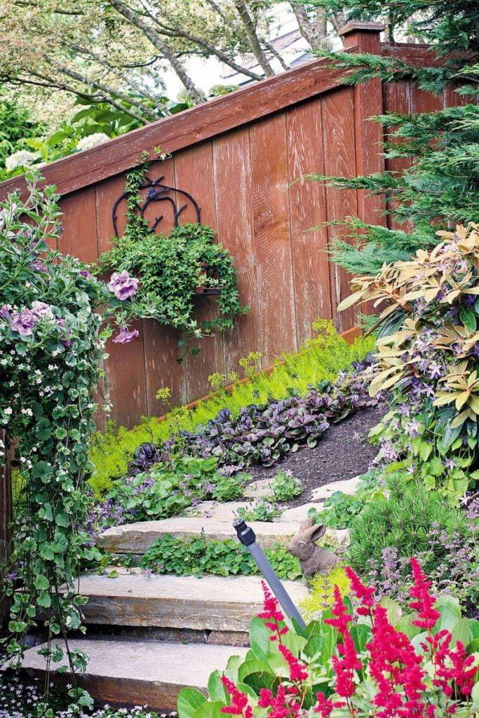 растения вдоль лестниц