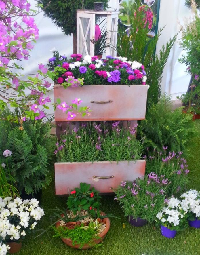 цветы в комоде на улице