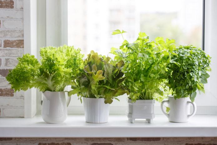 Как использовать подоконник в маленькой квартире: 10 необычных идей