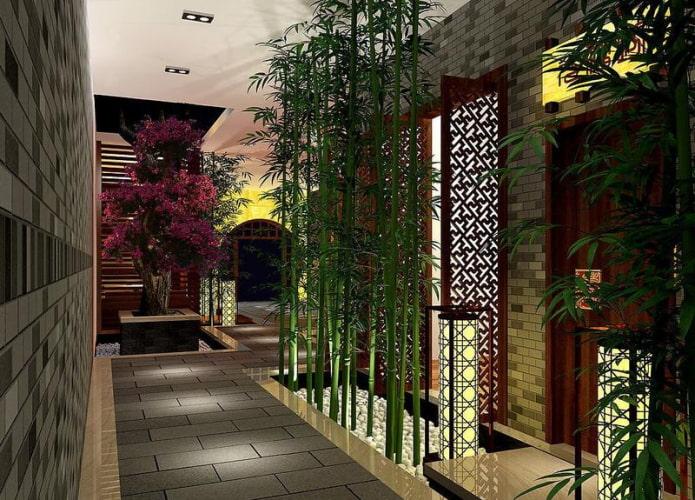 высокий бамбук в коридоре