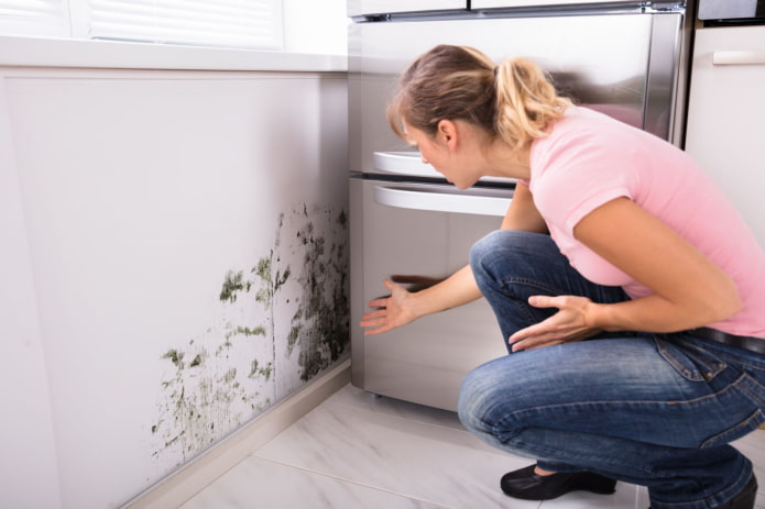 Как бороться с плесенью на стенах? – 13 рабочих способов