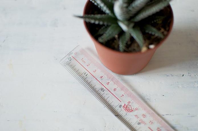 Измеряем ширину и высоту