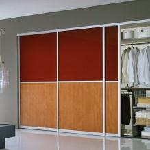 Варианты дизайна фасадов дверей шкафа-купе-10