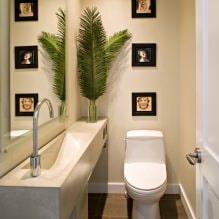 Интерьер туалета маленького размера: особенности, дизайн, цвет, стиль, 100+ фото-1