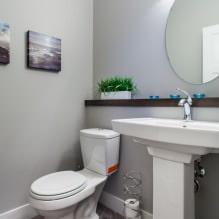 Интерьер туалета маленького размера: особенности, дизайн, цвет, стиль, 100+ фото-23