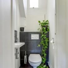 Интерьер туалета маленького размера: особенности, дизайн, цвет, стиль, 100+ фото-0