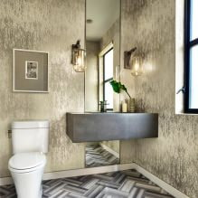 Интерьер туалета маленького размера: особенности, дизайн, цвет, стиль, 100+ фото-19