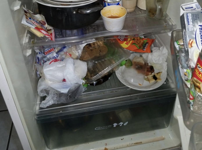 Неприятный запах в холодильнике - устраняем легко и просто