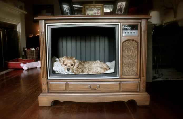 Что можно сделать из старого телевизора: 10 полезных идей