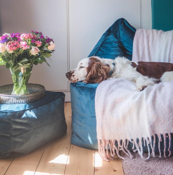 Чем заменить диван в гостиной?
