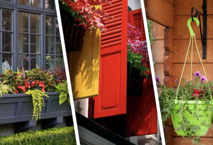 Примеры использования цветов за окном